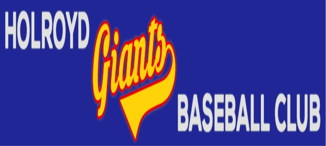 Image result for bankstown sports baseball club